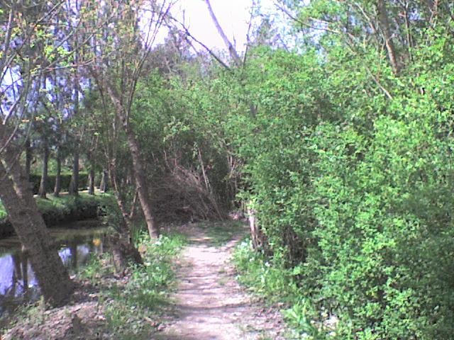 Día en las islas del Delta de Tigre