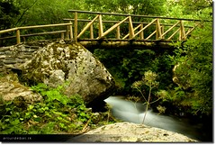 Aigestortes (arturii!) Tags: wood bridge mountain green nature water beauty rock wow river way photo nationalpark nice rocks europa europe paradise foto view place natural superb path walk awesome natura scene catalonia stunning vegetation vista pont caminar intersection catalunya capture cami guapa sort artur aigua roca fusta catalua muntanya gettyimages verd pirineus riu vegetaci treking captura pirineu espot catalogne impresive lloc santmaurici canoneos400d parcnacional inetersting amazinga arturii removedfromadobelightroomfortags arturdebattk creuement
