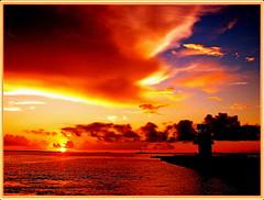 Las impresiones fantsticas de Okinawa Japn () Tags: japan greatshot  okinawa  aasia japn themoulinrouge beautifulearth blueribbonwinner encarnado oceanshore golddragon flickrcolour aplusphoto bestsunsetandsunrise ysplix theunforgettablepictures colourartaward excapture top20sunsetsofourhearts flickrestrellas dragongoldawards rubyphotographer flickrlovers colorfullaward bestflickrphotography amongstthethorns oltusfotos globalworldawards  cffaa