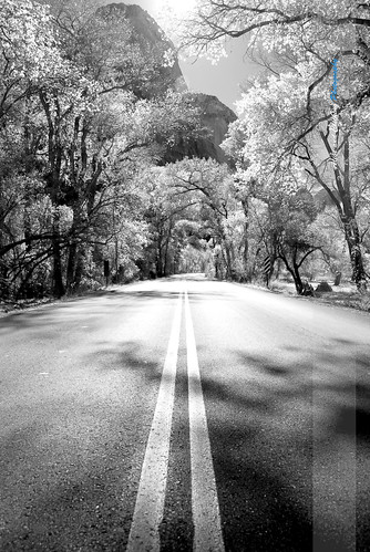 Life is a Road - 2 Black and White