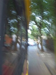 102_0205 (cas is king) Tags: df coyoacan cas