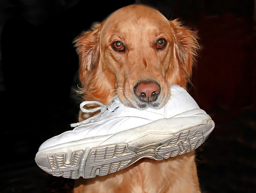 If the Shoe Fits, Time for a Walk