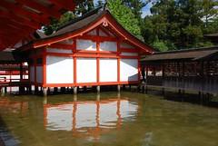 Itsukushima jinjya 42d .JPG (scarletgreen) Tags: japan nikon shrine hiroshima miyajima   itsukushima  jinjya     d40x tairanokiyomori   12411602
