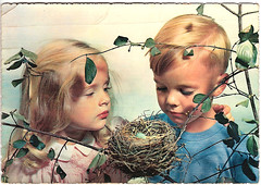 Postcard (CGoulao) Tags: old 2 two bird portugal vintage paper children kid post mail nest ninho antique postcard egg pssaro card 70s oldphoto postal criana papel seventies ancienne antigo ovo correio loiro postalcard tarjetapostal postkard cartepostal bilhetepostal anossetenta