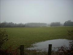 Battle Countryside