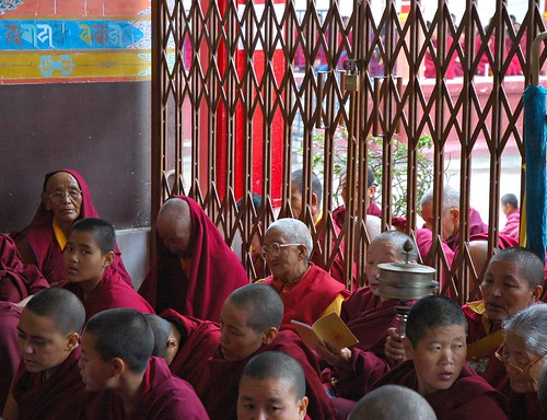 Spinning a prayer wheel, reading Dharma prayers, A group of Tibetan Buddhist nuns sits on the front porch of Tharlam Monastery of Tibetan Buddhism, Sakya Lamdre, Boudha, Kathmandu, Nepal