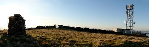 Goldenberry hilltop 27Dec08