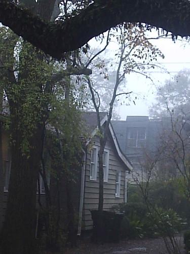 Winter Mornings in Houston