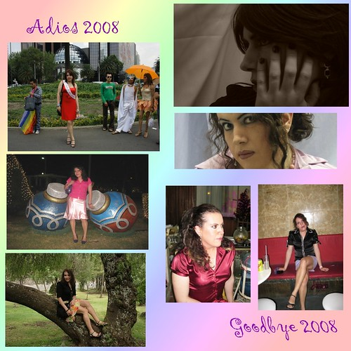 Adios 2008