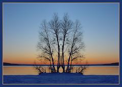 Sonnenuntergang 9 (bernstrid) Tags: germany geotagged psp deutschland see wasser sonnenuntergang nb spiegelung baum rahmen mv mecklenburgvorpommern neubrandenburg symmetrie tollensesee geo:lat=53546772 geo:lon=13251003