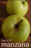 hemc 30 - manzana