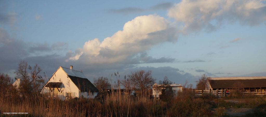 Les nuages sont superbes, en Camargue