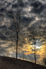 Last leaves have left (Bas Lammers) Tags: autumn sky sun tree netherlands leaves clouds forest explorer hill herfst nederland wolken boom sillouette lucht bos zon hdr heuvel bladeren mywinners mygearandme mygearandmepremium mygearandmebronze mygearandmesilver mygearandmegold mygearandmeplatinum