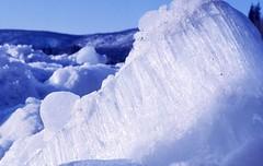 Ice broke (Pierre♪ à ♪VanCouver) Tags: winter canada ice yukon abigfave sofarsocute
