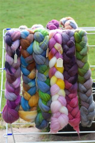 Rainbow Rovings