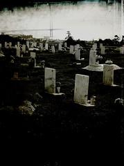 cemiterio ajuda (rui correia fotografia) Tags: life street city cidade urban bw mix raw lisboa pb vida urbano rui fragments themix correia ruicorreia ruithemixcorreia namesnumbers photosdontneedtitle