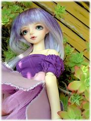 Fleur 2 (Freejj) Tags: dolls bjd dollfie dz tintan dollzone
