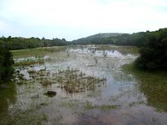 Le magnifique site de Tre Padule avec un de ses étangs au-dessus de Rundinara