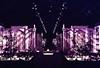 See the lovely stars on your return (femme_makita) Tags: destroyed dorisduke ddcf savedukegardens indopersiangarden dorisdukecharitablefoundation joanesperopresident nannerlokeohanechair johnjmackvicechair harrybdemopoulos anthonysfauci jamesfgill annehawley peteranadosy williamhschlesinger johnhtwilson johnezuccotti