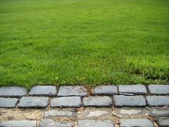 Step over here (PNT Photography) Tags: green portugal grass grande rocks marinha lifetravel