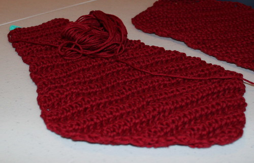 current flower petal wip blanket