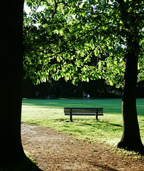 bench & trees (Margaret Stranks) Tags: park trees summer sunlight bench evening south oxford headington