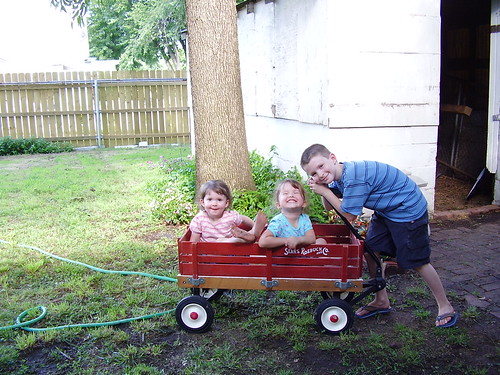 3 cuties in the backyard