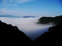 北宜公路上,只有早上才有的山嵐