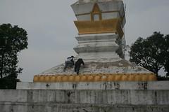IMG_7393 (davidlandes) Tags: laos 2008 englishteaching 200806 phongsali