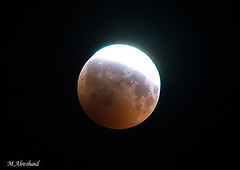 Lunar Eclipse - 17-8-2008 (Mishari Al-Reshaid Photography) Tags: nightphotography red moon night photoshop canon eclipse nightshot tripod luna kuwait canoneos lunar 70200 f28 photoshopcs2 lunareclipse q8 redmoon gtm canoncamera canoneflens imagestabilizer q80 canonllens 40d mishari aplusphoto kuwaitphoto kuwaitphotos fullmooneclipse canoneos40d canon40d kvwc excapture kuwaitartphoto gtmq8 kuwaitart kuwaitvoluntaryworkcenter kuwaitvwc grendizer99 canonef7020028is kuwaitphotography grendizer99photos moonphoto misharialreshaid 17thofaugustlunareclipse eclipseinkuwait 1782008eclipse malreshaid misharyalrasheed