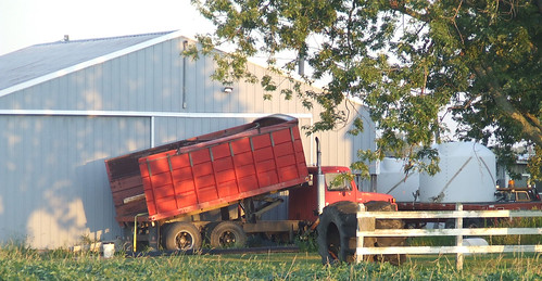 indiana_farm_083108_crop