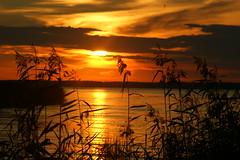 Sunset (kezwan) Tags: sunset nature sweden fantasy sverige kezwan 1on1sunrisesunsets