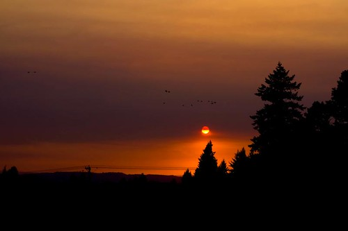 Where I Can Be At Peace - sunset in Stayton Oregon