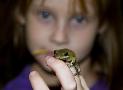 Isabel and Her Frog (Darrell Lawrence ( darrelllawrence.com )) Tags: family pet cute girl bokeh reptile frog amatuer d300 1685 bokehwhores macrophotosnolimits~votenow