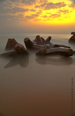 reflection (alkhaledi) Tags: reflexions golddragon aplusphoto
