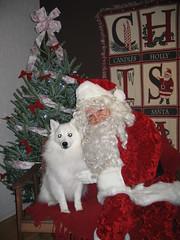 The Dog Shop Santa Photos 049 (WashHumane) Tags: santa dog shop photos whs the 12608