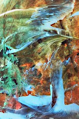 The Water Bird (Sophie Shapiro) Tags: abstract artist painter wax spiritual encaustic sophieshapiro thewaterbird spiritualhistorian cmttherapist