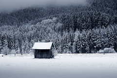 Between The Worlds (Martin Gommel) Tags: xmas trees winter house snow black tree germany landscape team open wide shed land feeling straight scape blackforest tool toolshed chrismas 30d kwerfeldein mace2000 martingommel epiceditsselection