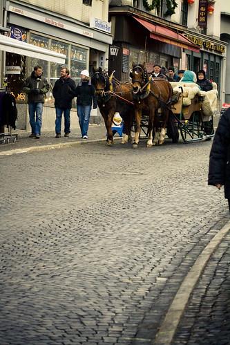 Einsiedeln Horses