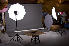 Setup1 (HeatherLynn Photography) Tags: paper studio floor bees alien backdrop roll setup hardwood strobe savage
