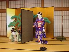 Kyoto Cuisine and Maiko Evening (maikohaaan) Tags: show japan dinner japanese restaurant kyoto event maiko geiko geisha  ryokan kimono gion imperialpalace kinkakuji kiyomizu kaiseki kiyomizutemple hatanaka hanamachi tawaraya        ozashiki yasakajinjya ryoutei