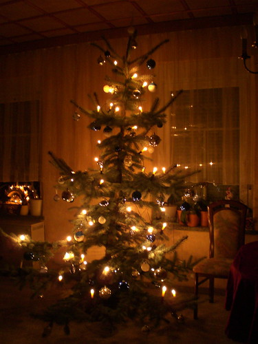 Gudrun's Tree