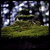 日光 ❁卍❁ チビ森 (gullevek) Tags: light 6x6 film nature japan stone geotagged lights iso100 moss fuji bokeh bronica 日本 lantern nikko 石 geen 日光 栃木県 fujivelvia100f bronicasqai epsongtx900 zenzanonps80mmf28 geo:lat=36752583 geo:lon=139590949