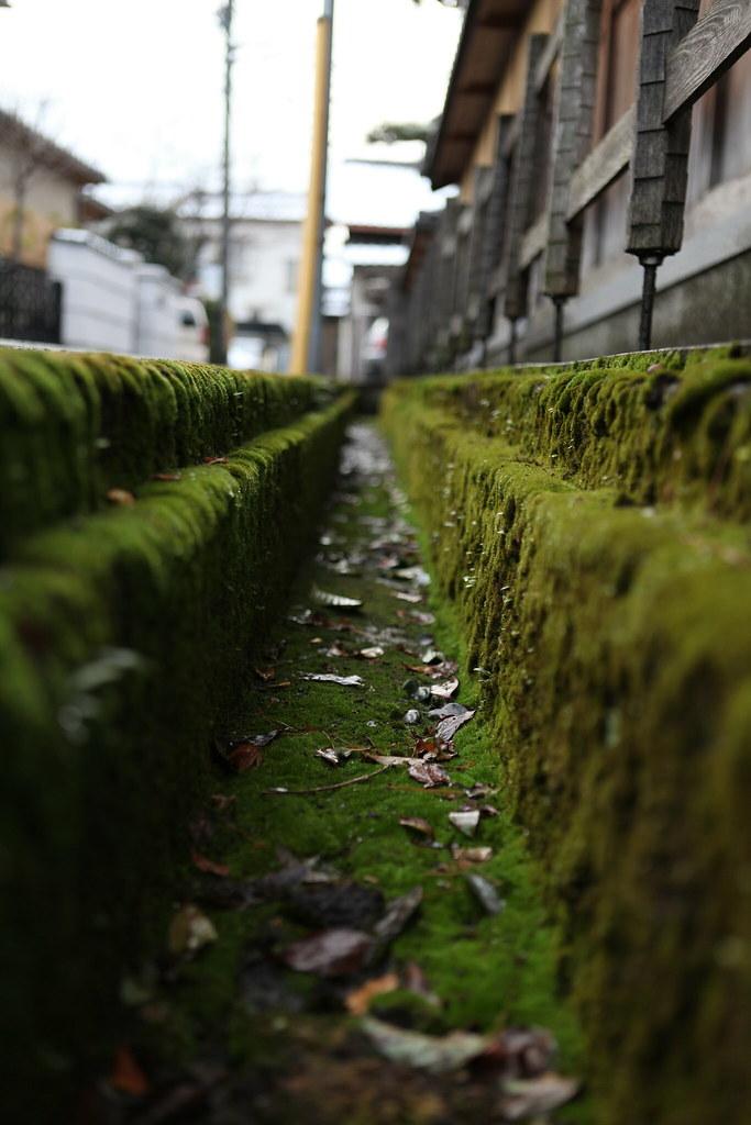 Les bonnes adresses à Kyoto : la base de données de référence 4