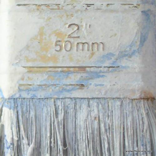 macro photograph paint brush detail