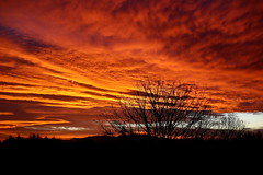 What a way to start the weekend (bicameral) Tags: red sky orange sunrise scotland january lochlomond drymen