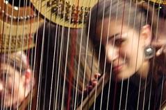 NACARA harpistes (alainalele) Tags: internet creative commons bienvenue licence presse harpe bloggeur paternit