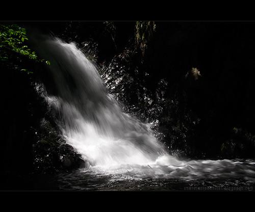 valea moasei (XIII)