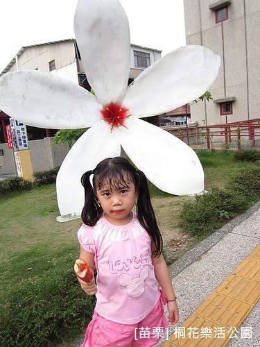苗栗樂活桐花公園203