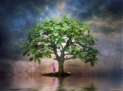 Emergence (AlicePopkorn) Tags: tree love creativity peace dove raven emerge artuniinternational dualityunitedinheart